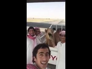 Pozdrowienia z Kataru