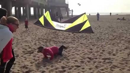 Zabawny latawiec na plaży