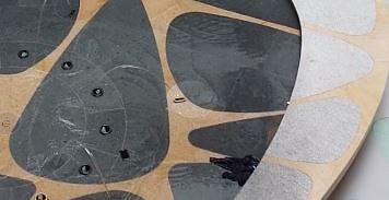 Występ foczki w rzeszowskiej galerii