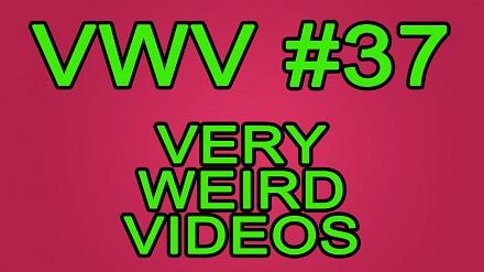 BDF! - Bardzo dziwne filmiki #37