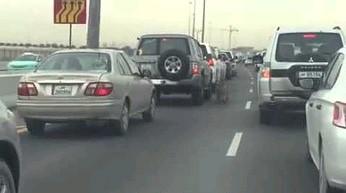 """Katar i ich """"domowe"""" zwierzątko spacerujące po autostradzie"""