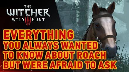 Wiedźmin 3: Dziki Gon - Płotka DLC!