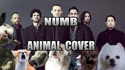 Linkin Park w nowej odsłonie - animalistycznej