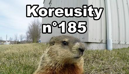 Koreusity n°185