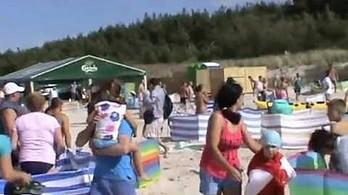 Dzik rozprawia się z plażowiczami w Karwii