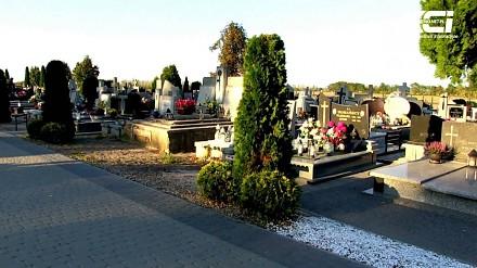 """Konsternacja w Woźniakowie - """"ciekawy"""" kształt krzewów na cmentarzu"""