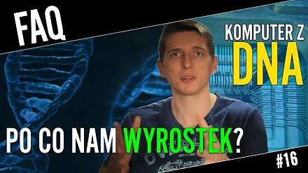 Po co nam wyrostek i czy można zbudować komputer z DNA?