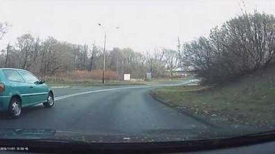Świr na drodze w Bielsku