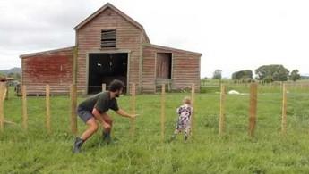 Jak nauczyć dziecko przechodzić przez płot?