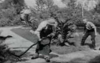 Pierwszy sfilmowany prank - z XIX wieku!