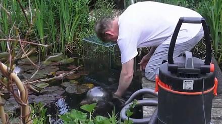 Jak zrobić akwarium ponad powierzchnią wody w ogrodowym oczku wodnym?