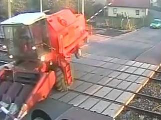 Bizon uwięziony na przejeździe kolejowym!