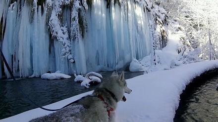 Zimowa przechadzka po Parku Narodowym Jezior Plitwickich