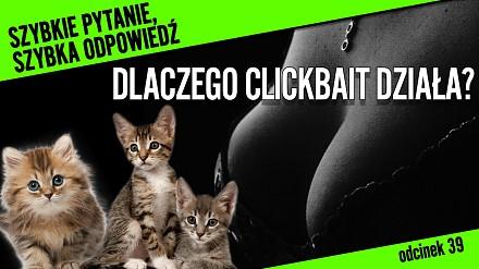 Czy te kociaki bawią się pośród wielkich piersi? - czyli dlaczego działa na nas CLICKBAIT?