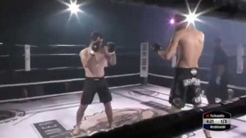 Wybity bark nastawiony w czasie walki przez przeciwnika