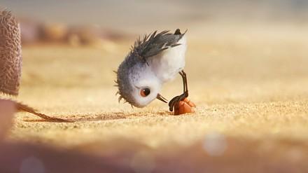 Ckliwy filmik o ptasim słodziaku od Disneya