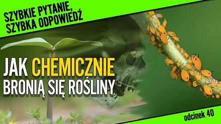 Jak chemicznie bronią się rośliny?