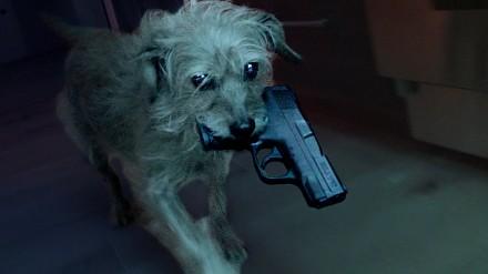Dog Wick, czyli co by było, gdyby...