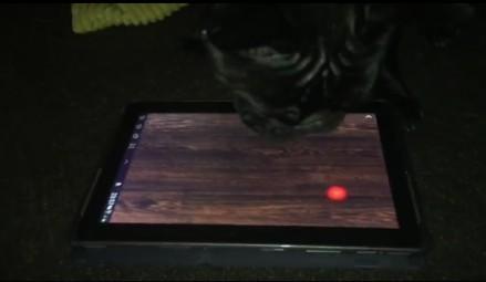 Pies gra na tablecie od ex