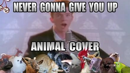 Rick Astley w zezwierzęconym coverze