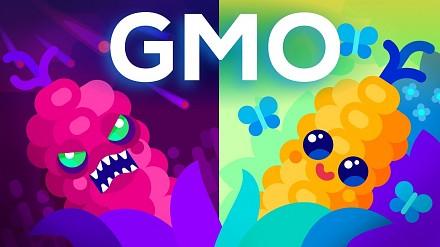 Krótko i treściwie o GMO - czy to faktycznie czyste zło?