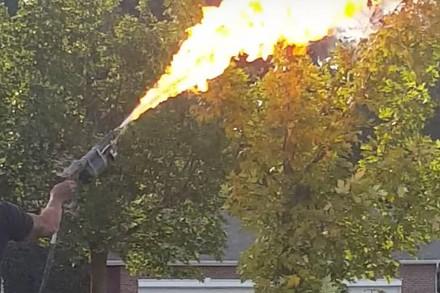 Usuwanie gniazda szerszeni przy użyciu miotacza ognia