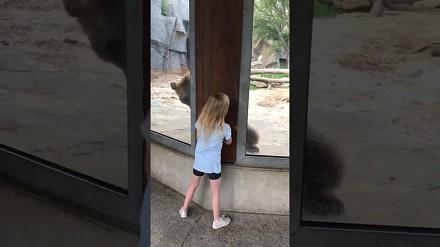 Dziewczynka bawi się w chowanego z niedźwiedziem