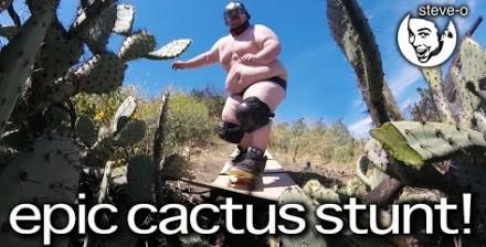 Steve-O namówił grubego Zacha na wjazd w kaktusy