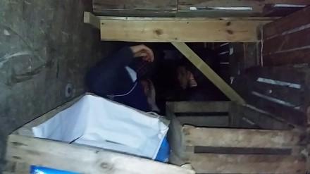 Cudzoziemcy w drewnianych skrzyniach