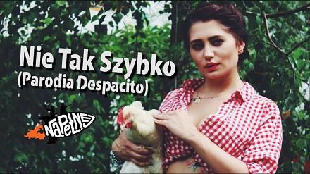 """""""Nie Tak Szybko"""", czyli kolejna parodia Despacito, tym razem od Na Pełnej"""