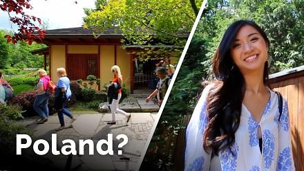 Polak i piękna Japonka zwiedzają nasz kraj. Na początek Wrocław