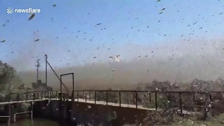 W Rosji Apokalipsa już się zaczęła