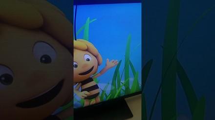Rysownik-śmieszek zostawił po sobie znak w Pszczółce Mai