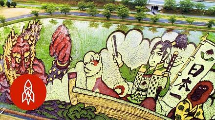 Japońskie miasteczko tworzy dzieła sztuki z upraw ryżu