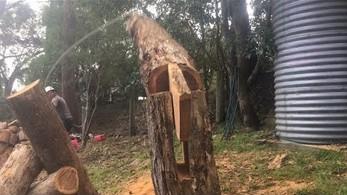 Technika, która pozwala położyć drzewo tam, gdzie chcemy