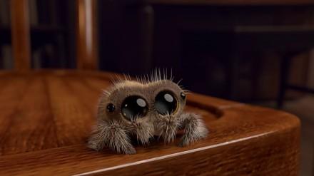 Lucas - animowany pajączek