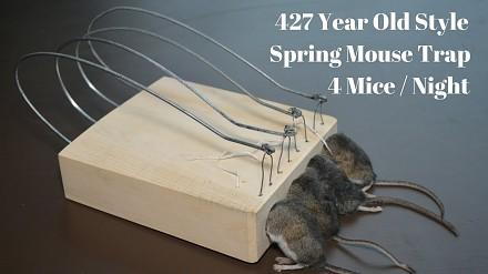 Pułapka na mysz stara jak świat