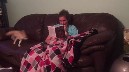 Spróbuj czytać książkę przy fenku pustynnym