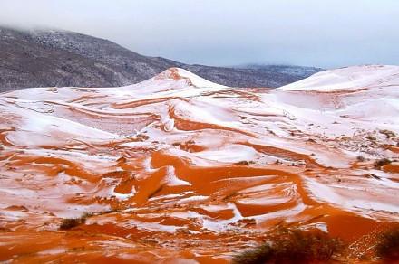Bardzo rzadkie zjawisko - na Saharze spadł śnieg