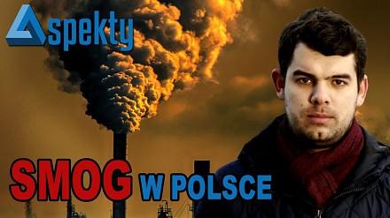 Smog w Polsce - co grozi palącym śmieciami?