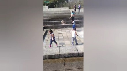 Dziecko powalone przez fontannę
