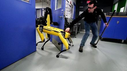 Testowanie wytrwałości robota-psa z Boston Dynamics