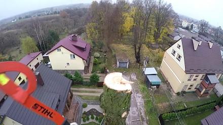 Akcje sezonu polskiego drwala