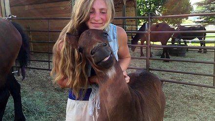 Jak głaskać konia, aby się uśmiechnął?