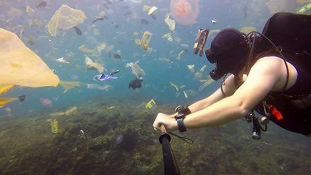Co pływa w wodach oceanu?
