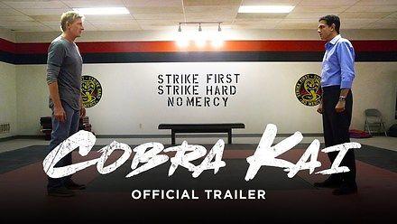 Cobra Kai - kontynuacja Karate Kid