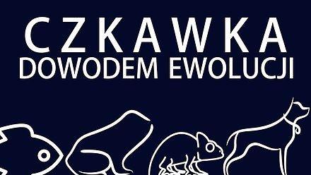 Czkawka dowodem ewolucji | Uwaga! Naukowy Bełkot