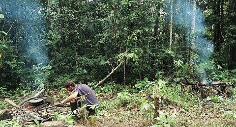 Sami pośrodku amazońskiej dżungli
