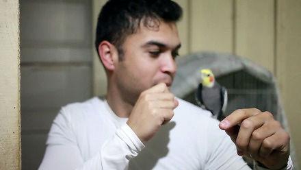 Beatbox z ptakiem