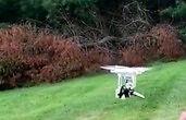 Bam Margera (eks-Jackass) testuje swojego nowego drona